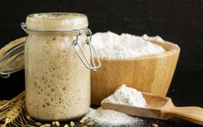 Полный гид по консервации, хранению и оживлению хлебной закваски