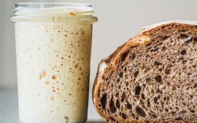 Роль дрожжей в выпечке, питании и здоровье